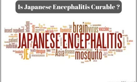 Is Japanese Encephalitis Curable ? (Must Check)