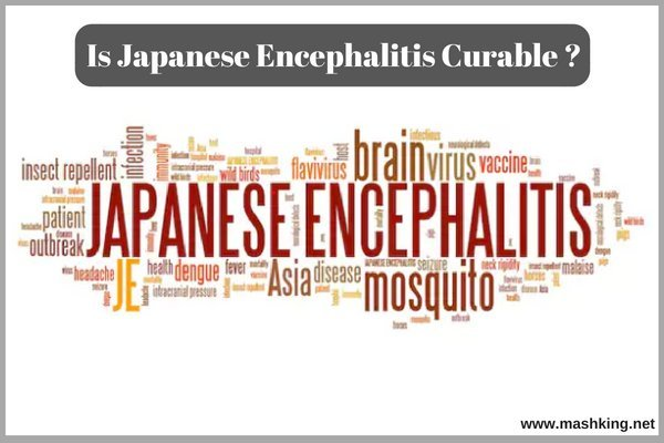 Japanese Encephalitis Curable