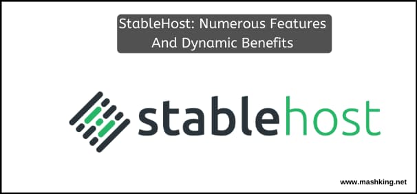 StableHost: Discover It's Numerous Features And Dynamic Benefits Here